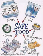 Safe Food Diagram showing components of safe food practices